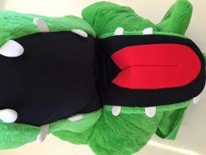 Krokodil-29a-Kostüm