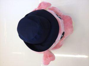 67a-schweine-kostu%cc%88me